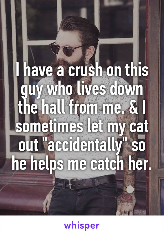 "I have a crush on this guy who lives down the hall from me. & I sometimes let my cat out ""accidentally"" so he helps me catch her."