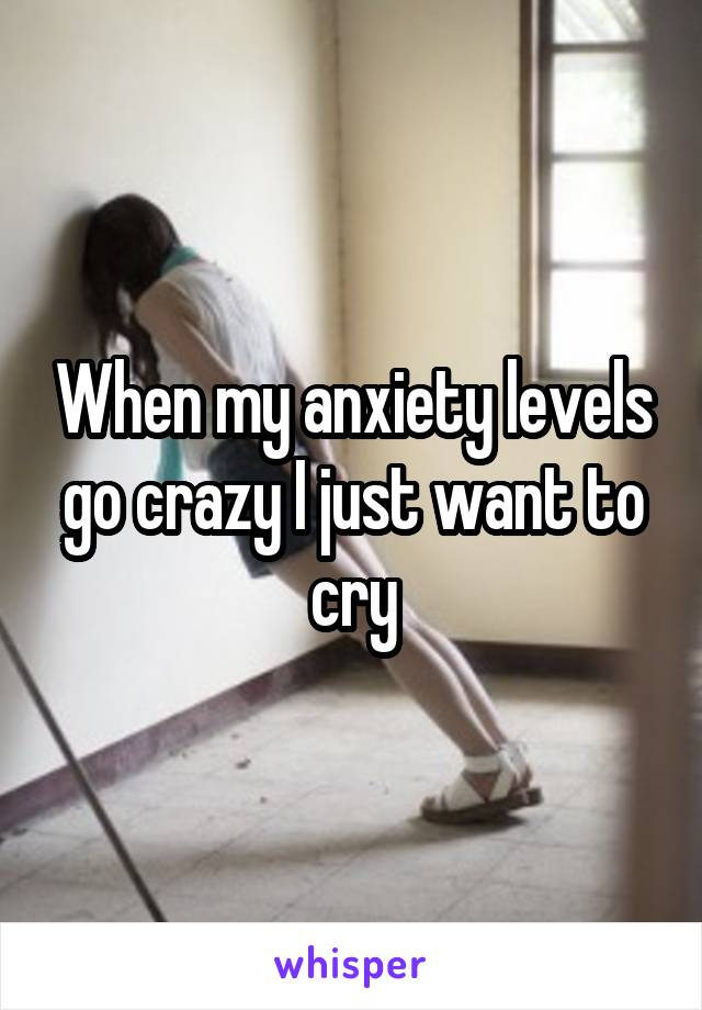 When my anxiety levels go crazy I just want to cry