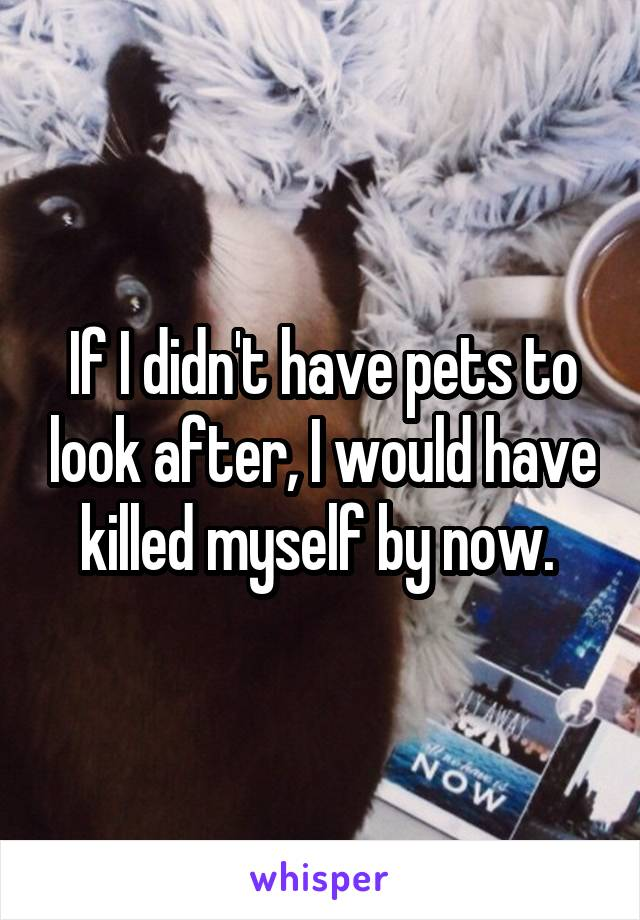 If I didn't have pets to look after, I would have killed myself by now.