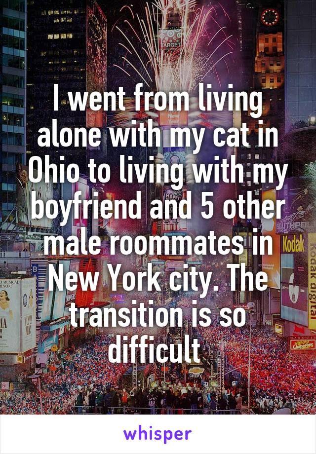 I went from living alone with my cat in Ohio to living with my boyfriend and 5 other male roommates in New York city. The transition is so difficult