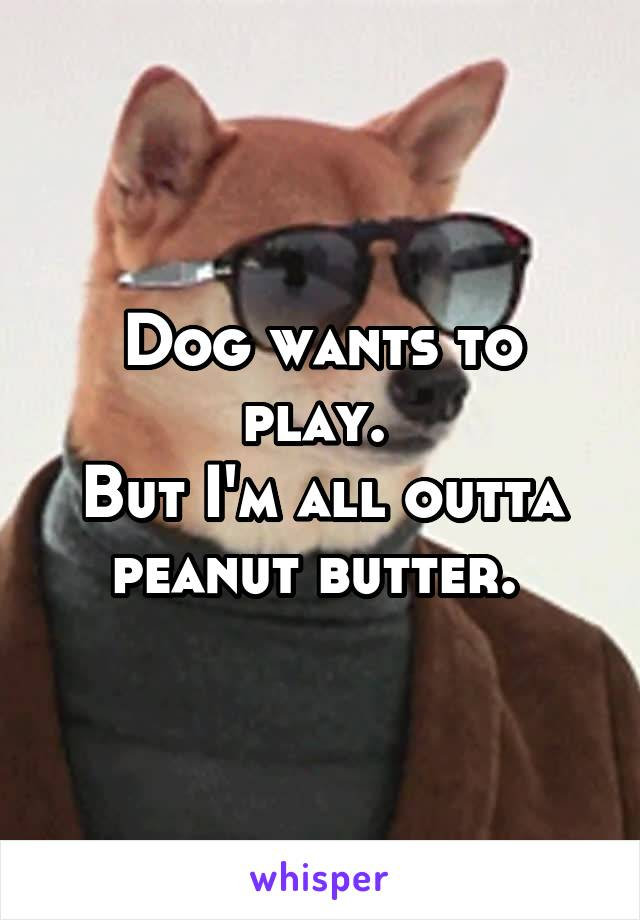 Dog wants to play.  But I'm all outta peanut butter.