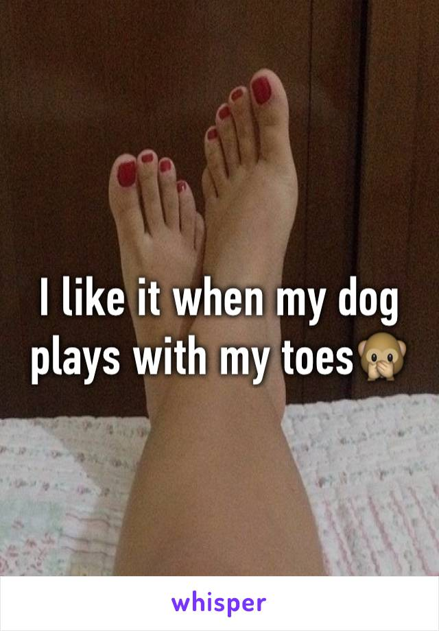 I like it when my dog plays with my toes🙊