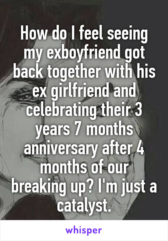 How do I feel seeing my exboyfriend got back together with his ex girlfriend and celebrating their 3 years 7 months anniversary after 4 months of our breaking up? I'm just a catalyst.