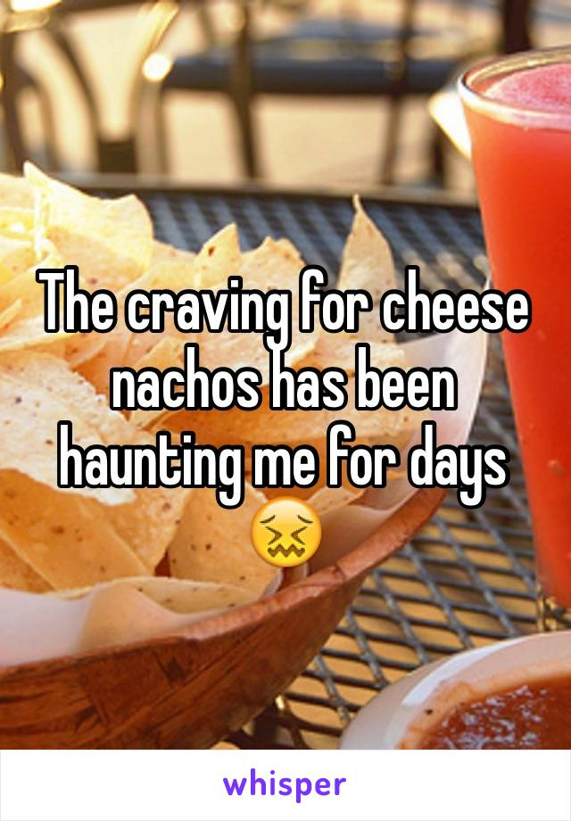 The craving for cheese nachos has been haunting me for days 😖