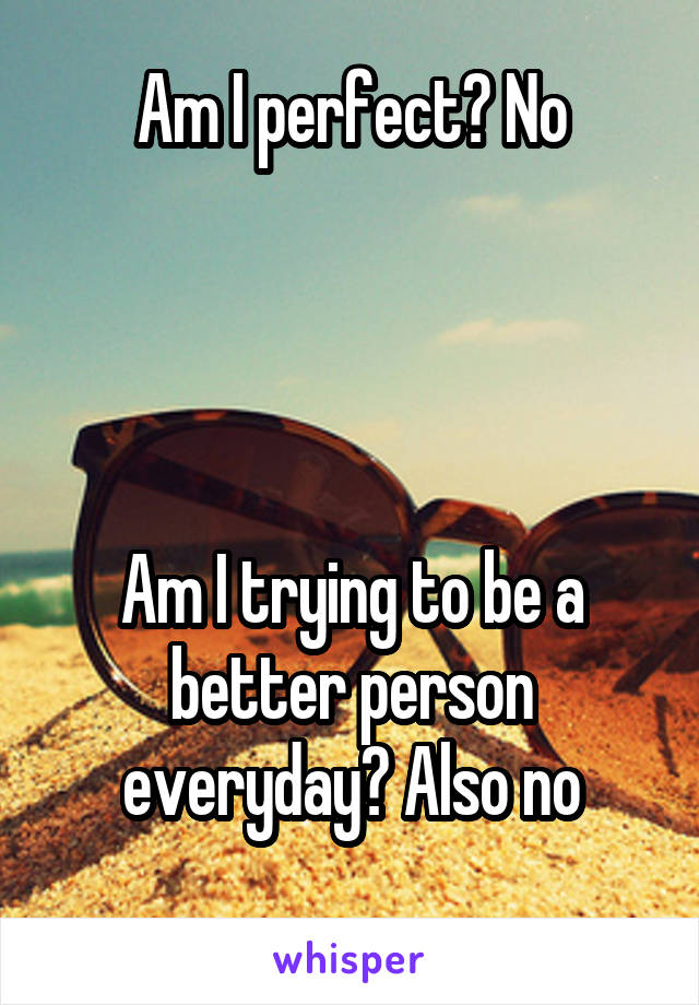 Am I perfect? No     Am I trying to be a better person everyday? Also no