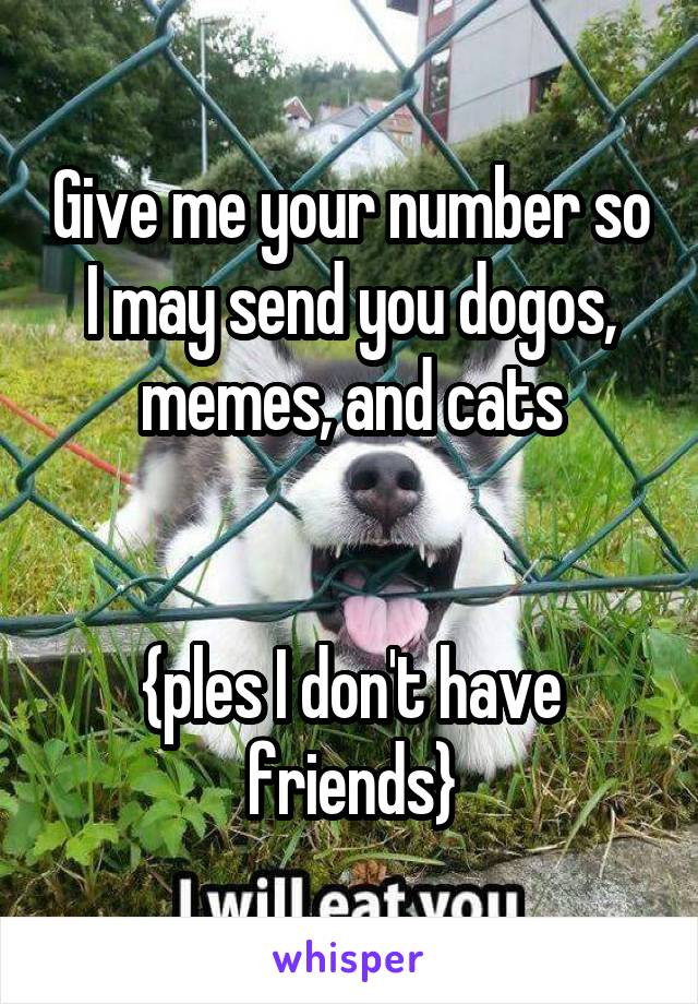 Give me your number so I may send you dogos, memes, and cats   {ples I don't have friends}