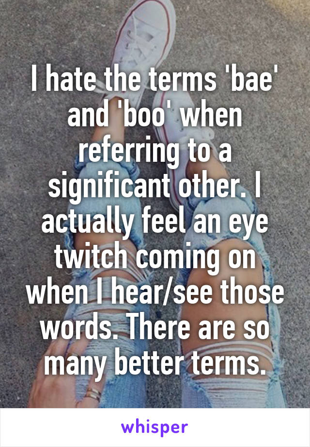 I hate the terms 'bae' and 'boo' when referring to a significant other. I actually feel an eye twitch coming on when I hear/see those words. There are so many better terms.