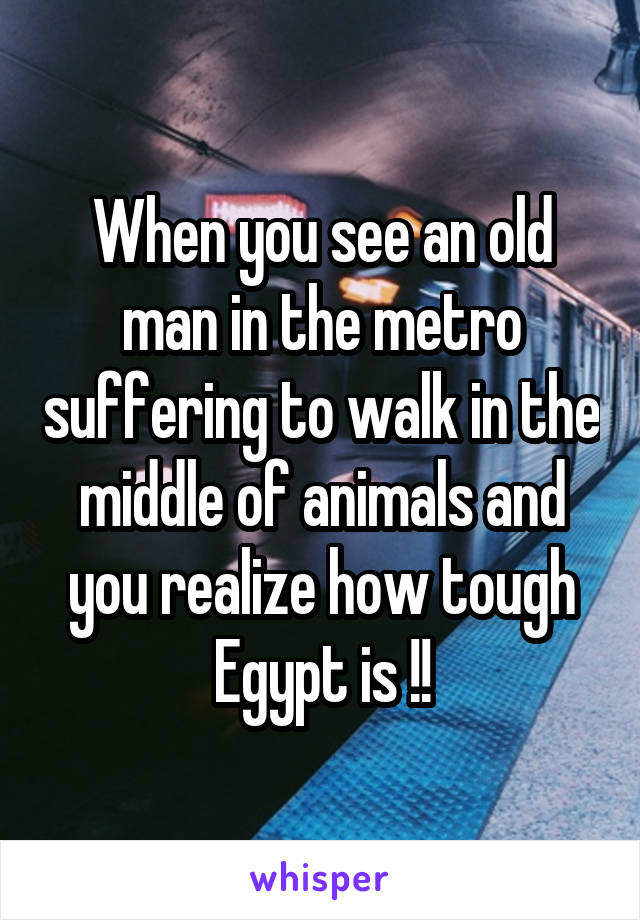 When you see an old man in the metro suffering to walk in the middle of animals and you realize how tough Egypt is !!