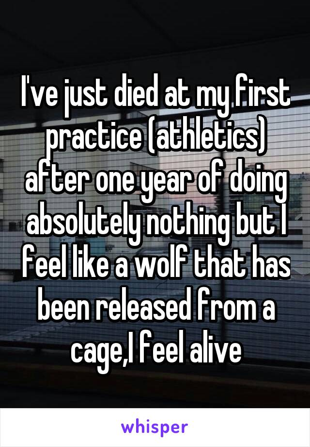 I've just died at my first practice (athletics) after one year of doing absolutely nothing but I feel like a wolf that has been released from a cage,I feel alive