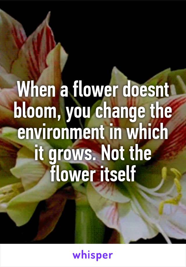 When a flower doesnt bloom, you change the environment in which it grows. Not the flower itself