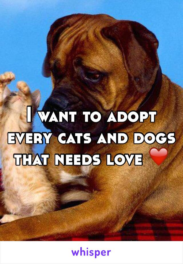 I want to adopt every cats and dogs that needs love ❤️