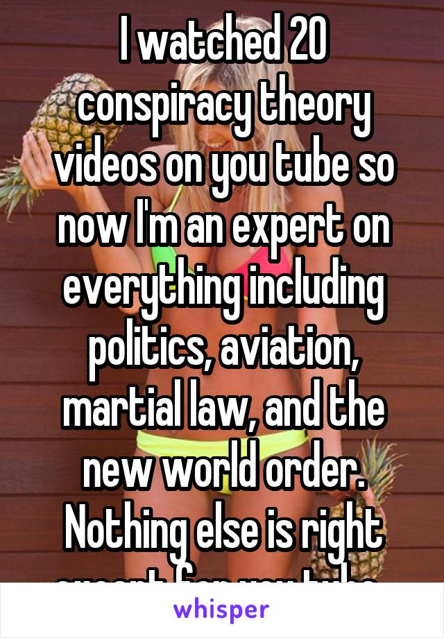 I watched 20 conspiracy theory videos on you tube so now I'm an expert on everything including politics, aviation, martial law, and the new world order. Nothing else is right except for you tube.