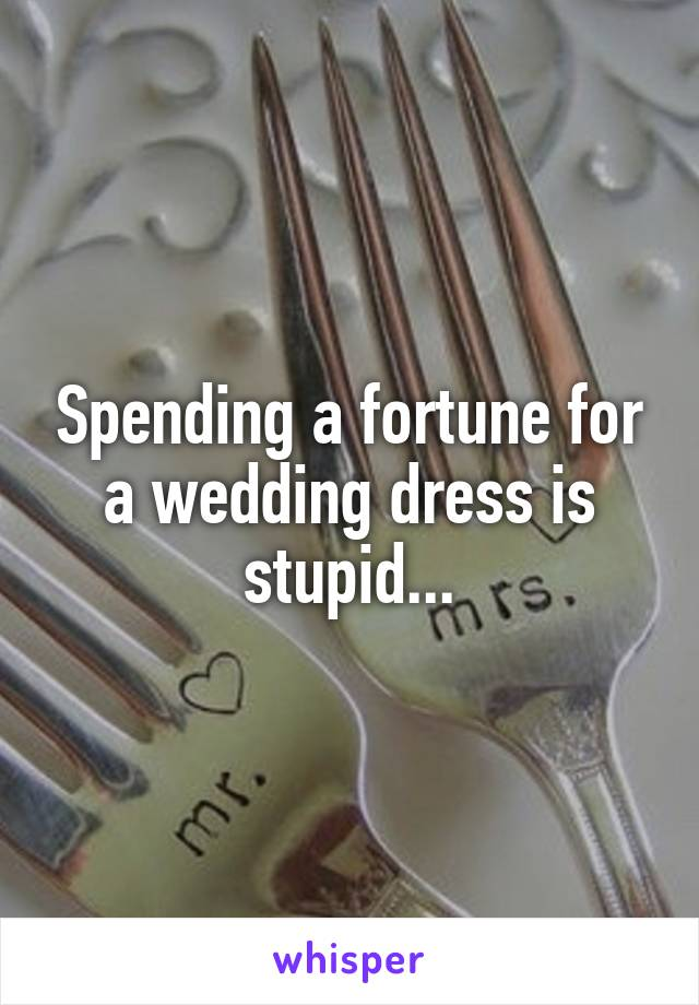 Spending a fortune for a wedding dress is stupid...