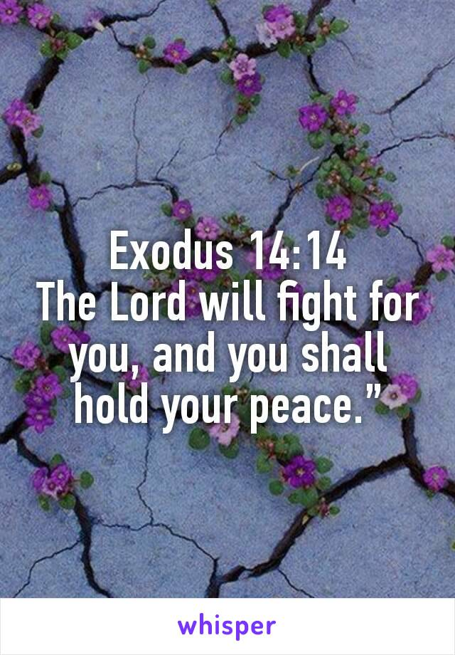 Exodus 14:14 The Lord will fight for you, and you shall hold your peace.""