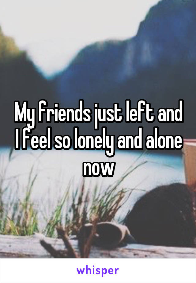 My friends just left and I feel so lonely and alone now