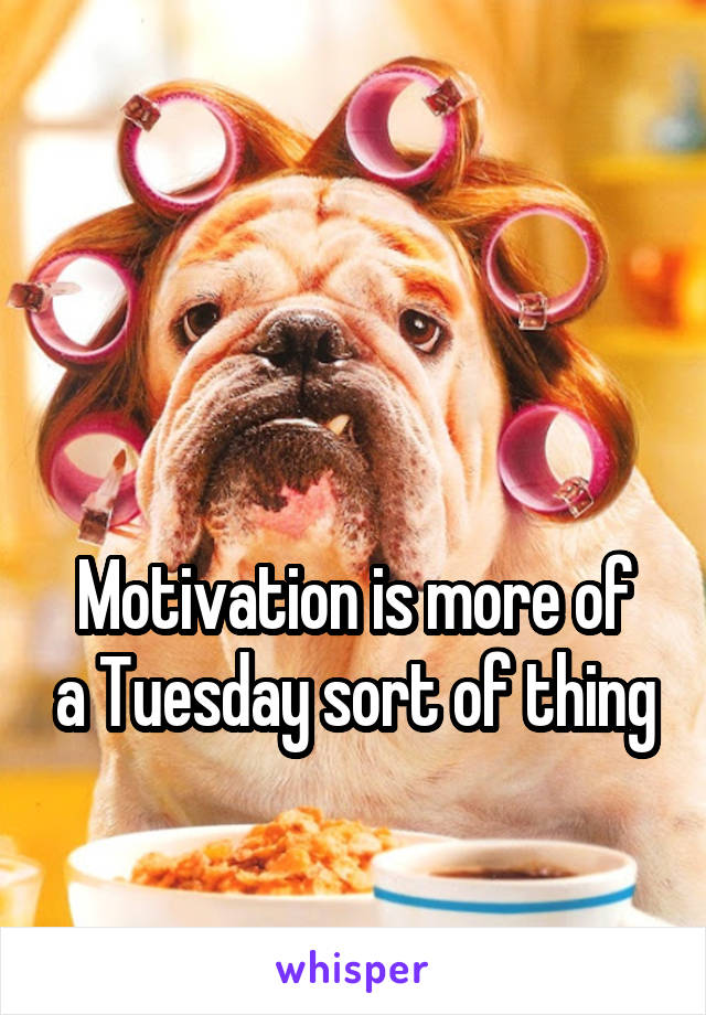 Motivation is more of a Tuesday sort of thing