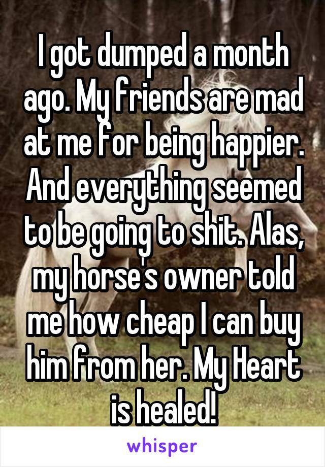 I got dumped a month ago. My friends are mad at me for being happier. And everything seemed to be going to shit. Alas, my horse's owner told me how cheap I can buy him from her. My Heart is healed!