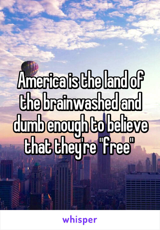 """America is the land of the brainwashed and dumb enough to believe that they're """"free"""""""