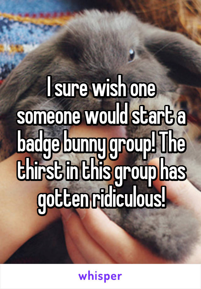 I sure wish one someone would start a badge bunny group! The thirst in this group has gotten ridiculous!