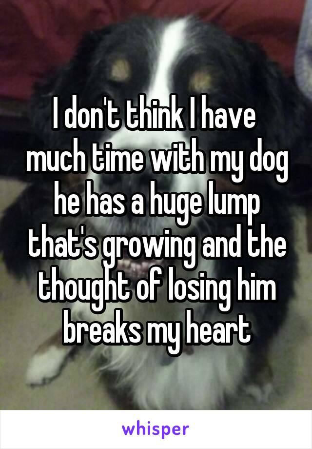 I don't think I have  much time with my dog he has a huge lump that's growing and the thought of losing him breaks my heart
