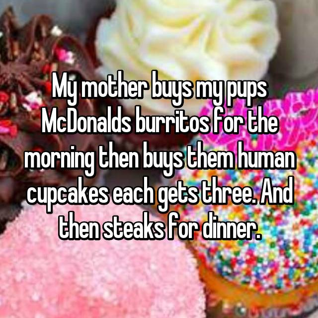 My mother buys my pups McDonalds burritos for the morning then buys them human cupcakes each gets three. And then steaks for dinner.