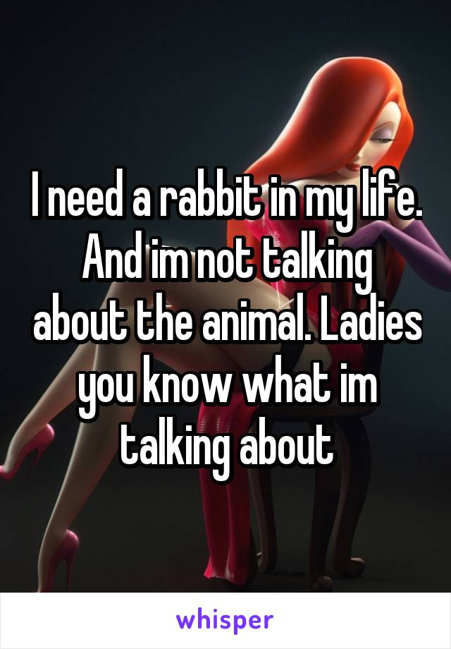 I need a rabbit in my life. And im not talking about the animal. Ladies you know what im talking about