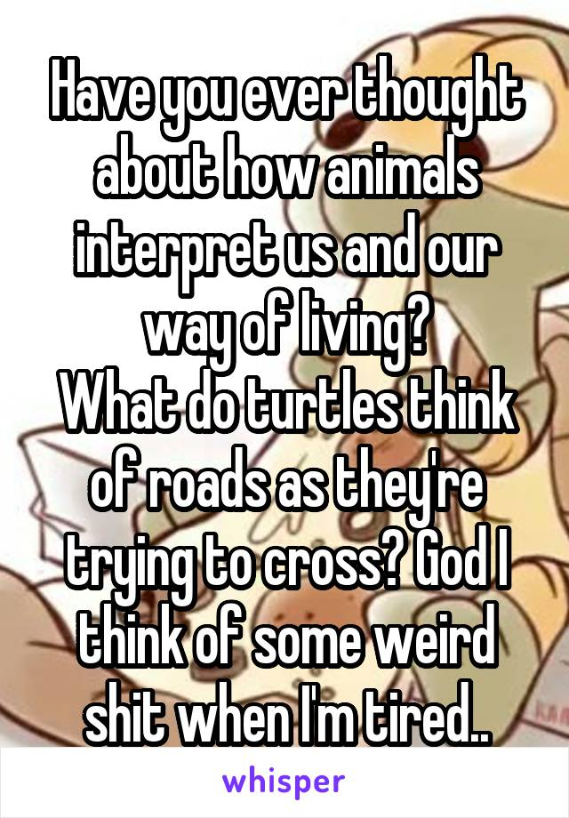 Have you ever thought about how animals interpret us and our way of living? What do turtles think of roads as they're trying to cross? God I think of some weird shit when I'm tired..