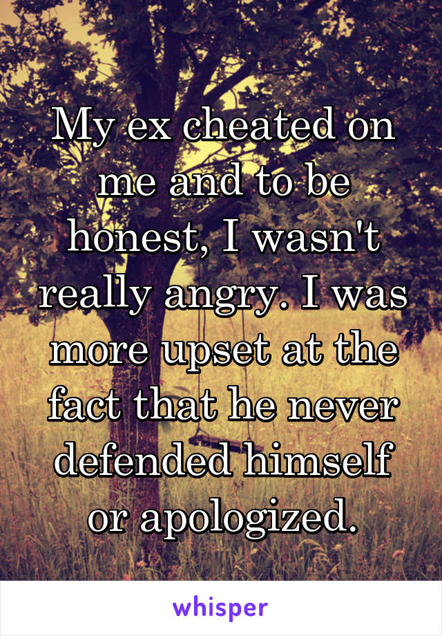 My ex cheated on me and to be honest, I wasn't really angry. I was more upset at the fact that he never defended himself or apologized.