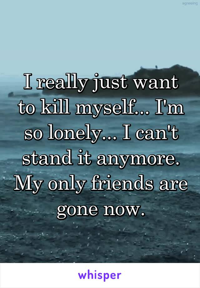 I really just want to kill myself... I'm so lonely... I can't stand it anymore. My only friends are gone now.