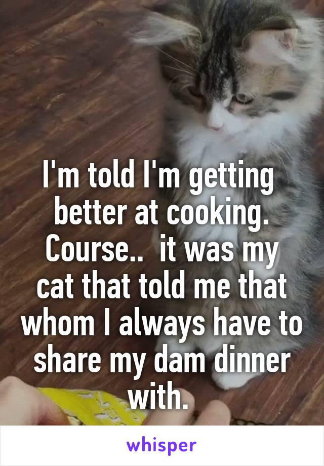 I'm told I'm getting  better at cooking. Course..  it was my cat that told me that whom I always have to share my dam dinner with.