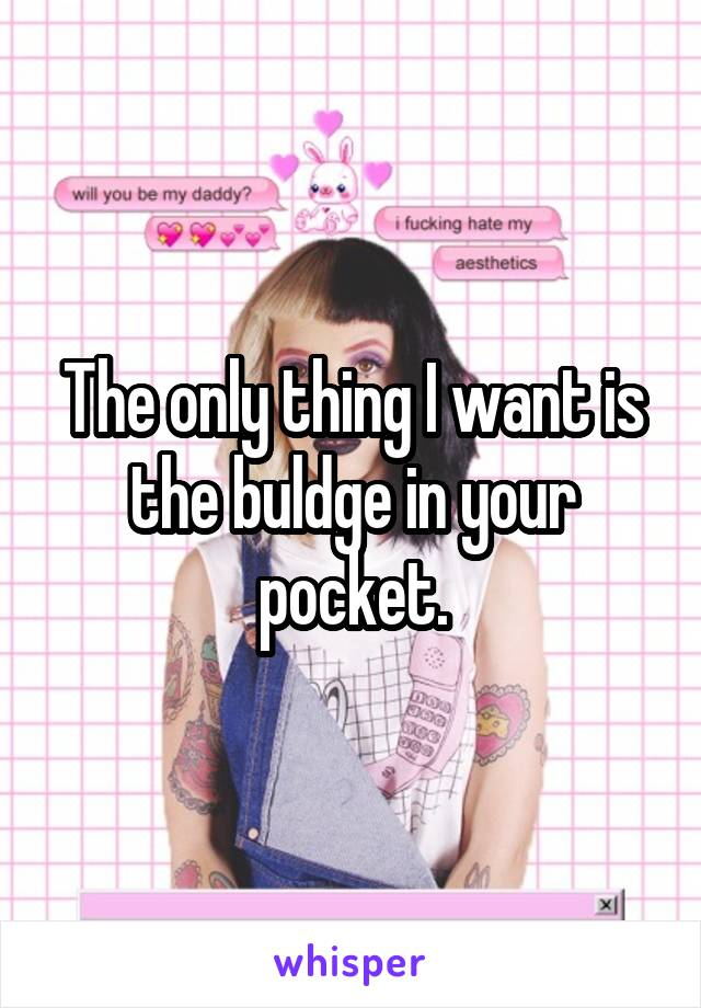 The only thing I want is the buldge in your pocket.