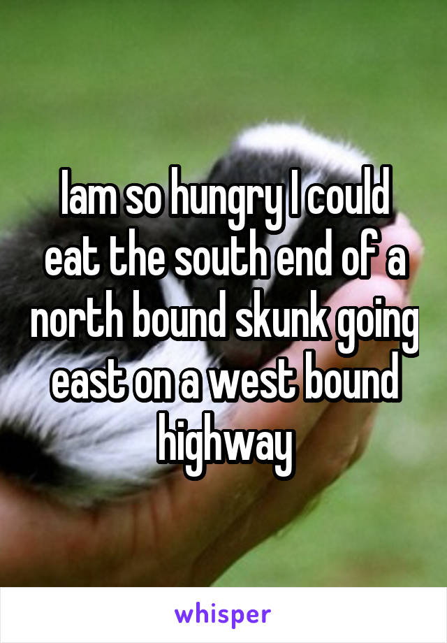 Iam so hungry I could eat the south end of a north bound skunk going east on a west bound highway