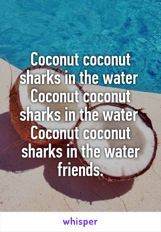 Coconut coconut sharks in the water  Coconut coconut sharks in the water  Coconut coconut sharks in the water friends.