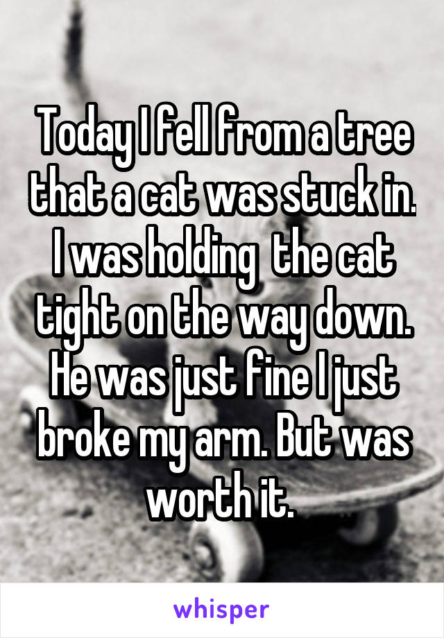 Today I fell from a tree that a cat was stuck in. I was holding  the cat tight on the way down. He was just fine I just broke my arm. But was worth it.