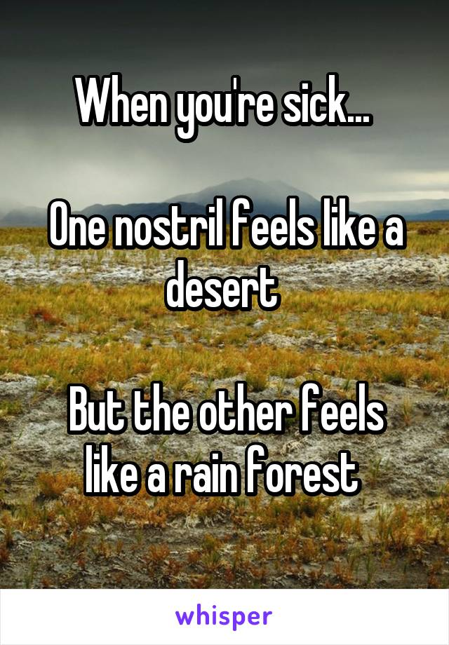 When you're sick...   One nostril feels like a desert   But the other feels like a rain forest