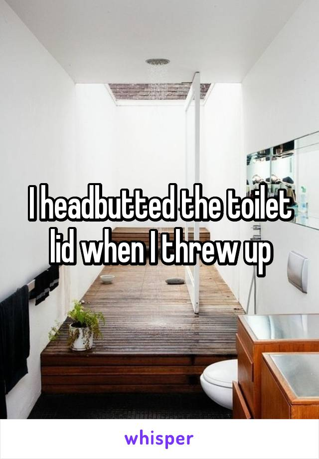 I headbutted the toilet lid when I threw up