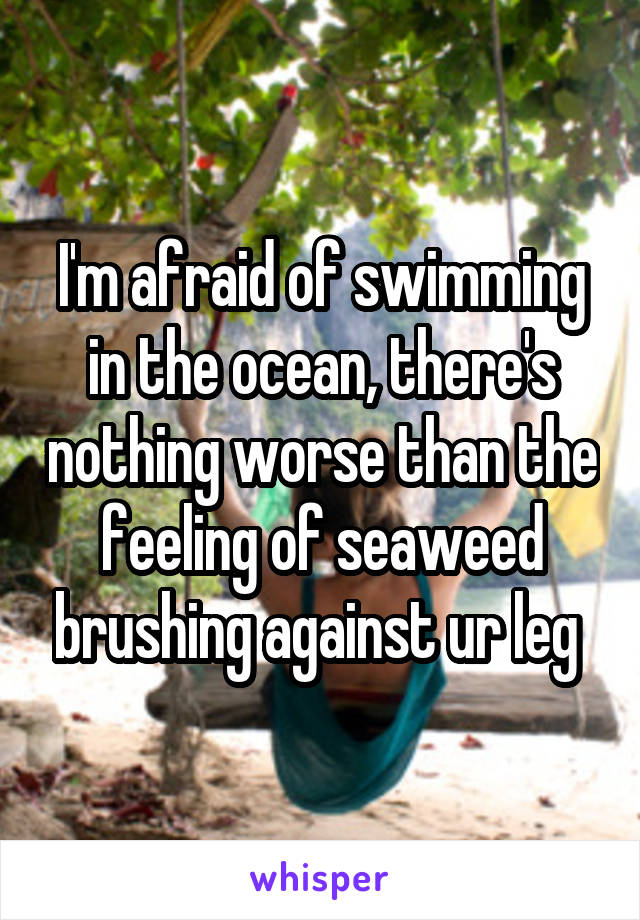 I'm afraid of swimming in the ocean, there's nothing worse than the feeling of seaweed brushing against ur leg
