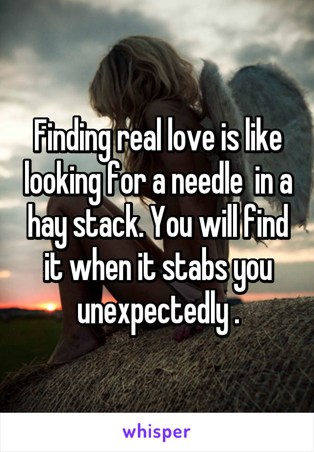Finding real love is like looking for a needle  in a hay stack. You will find it when it stabs you unexpectedly .