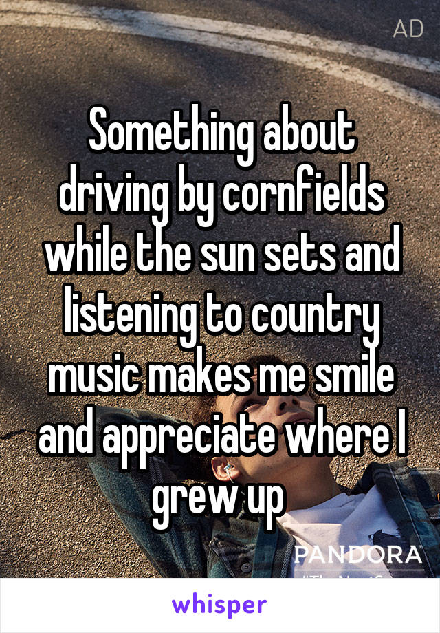 Something about driving by cornfields while the sun sets and listening to country music makes me smile and appreciate where I grew up