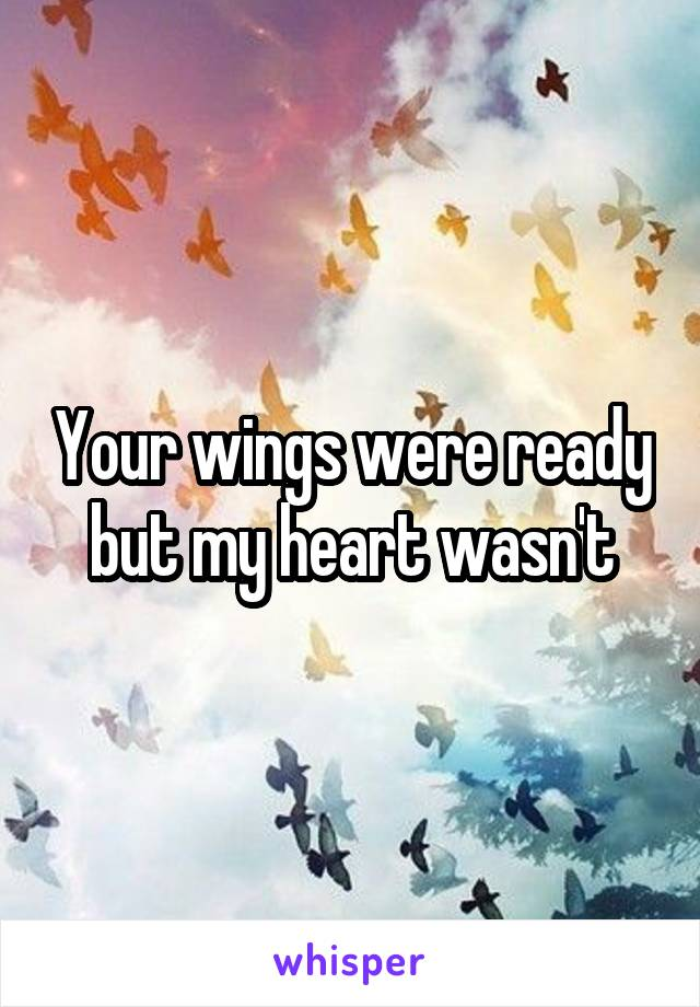 Your wings were ready but my heart wasn't