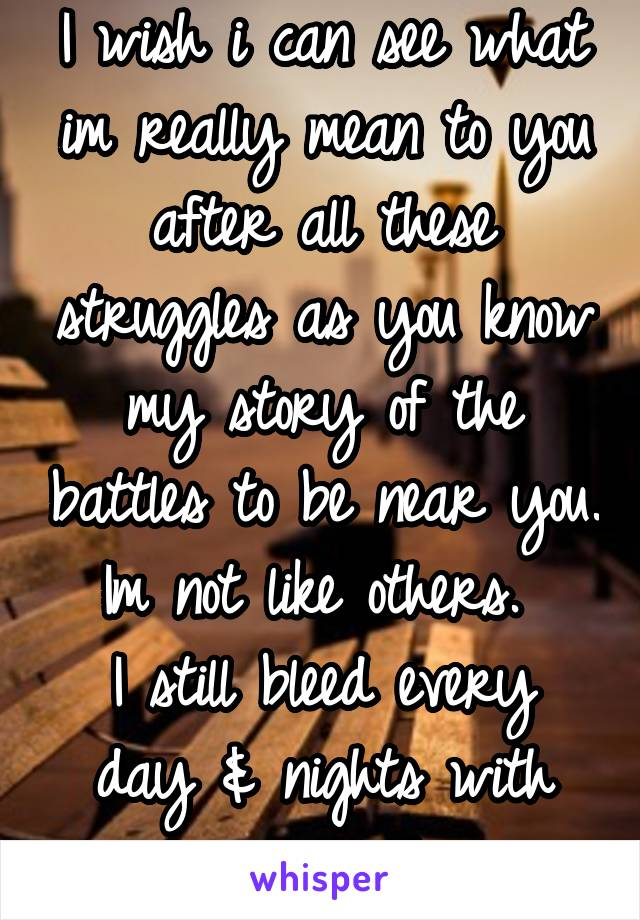 I wish i can see what im really mean to you after all these struggles as you know my story of the battles to be near you. Im not like others.  I still bleed every day & nights with my words
