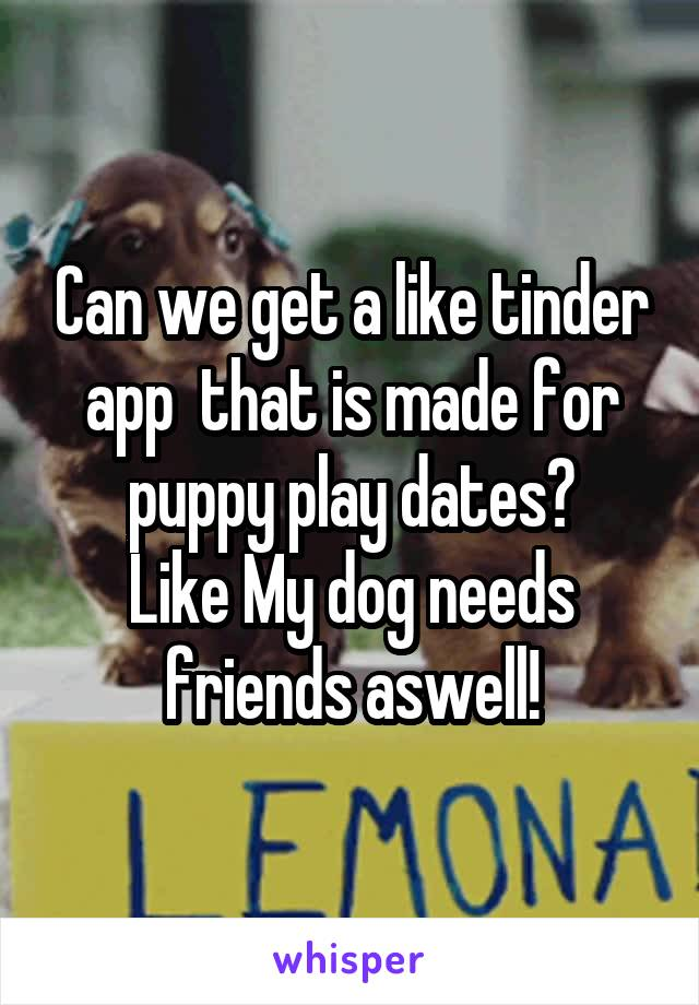 Can we get a like tinder app  that is made for puppy play dates? Like My dog needs friends aswell!