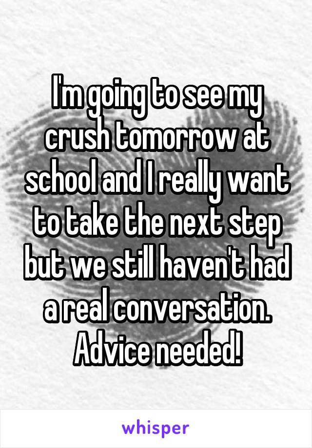 I'm going to see my crush tomorrow at school and I really want to take the next step but we still haven't had a real conversation. Advice needed!
