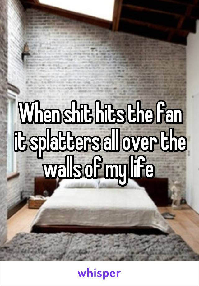 When shit hits the fan it splatters all over the walls of my life