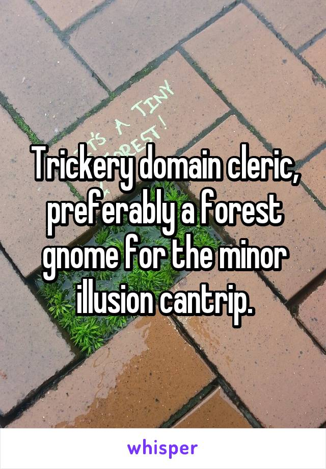 Trickery domain cleric, preferably a forest gnome for the