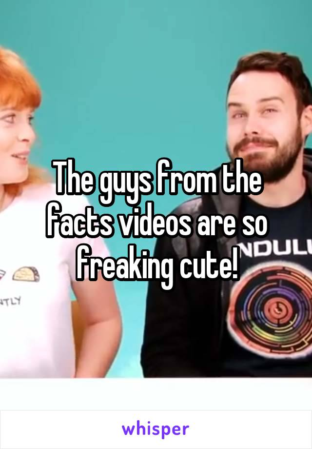 The guys from the facts videos are so freaking cute!