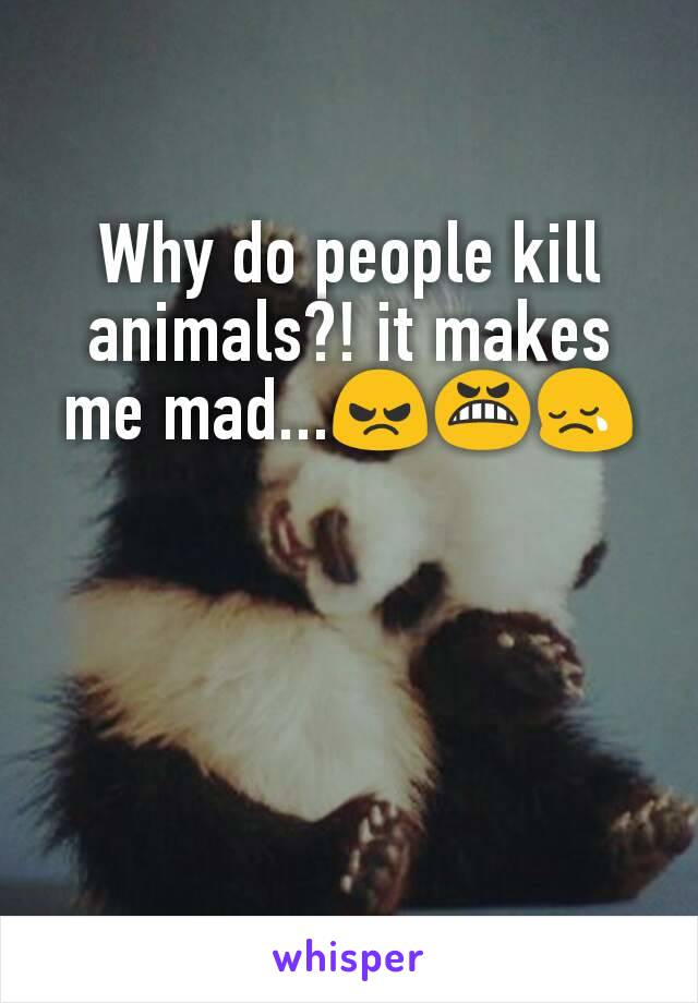 Why do people kill animals?! it makes me mad...😠😬😢