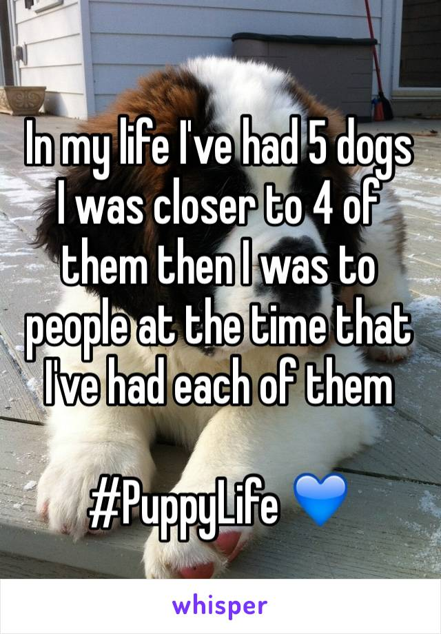 In my life I've had 5 dogs I was closer to 4 of them then I was to people at the time that I've had each of them  #PuppyLife 💙