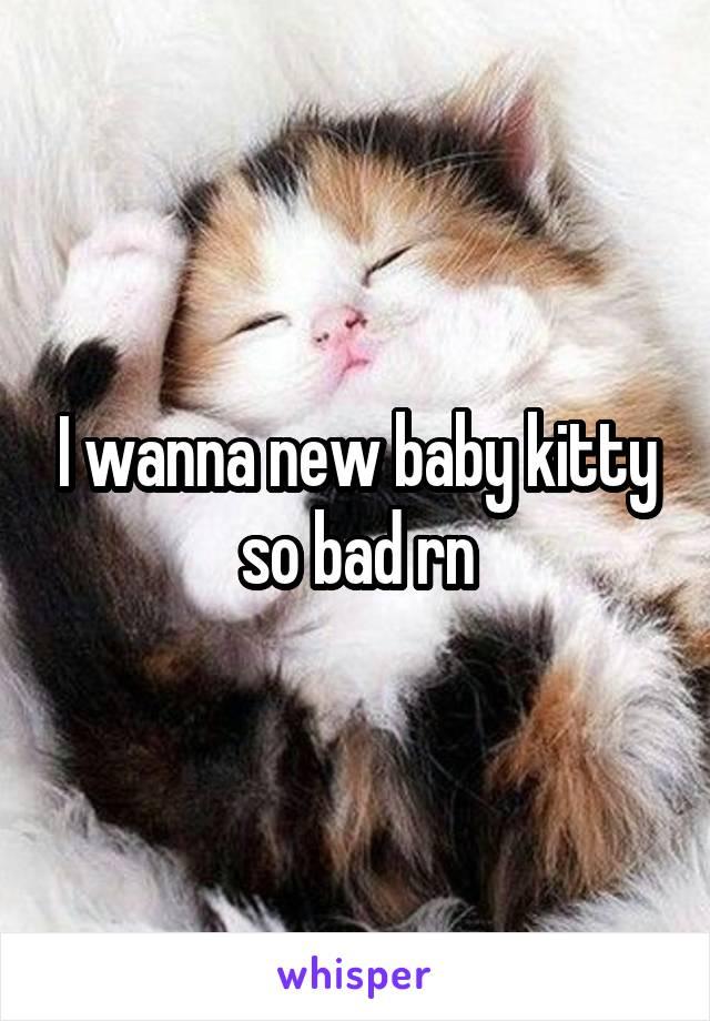 I wanna new baby kitty so bad rn