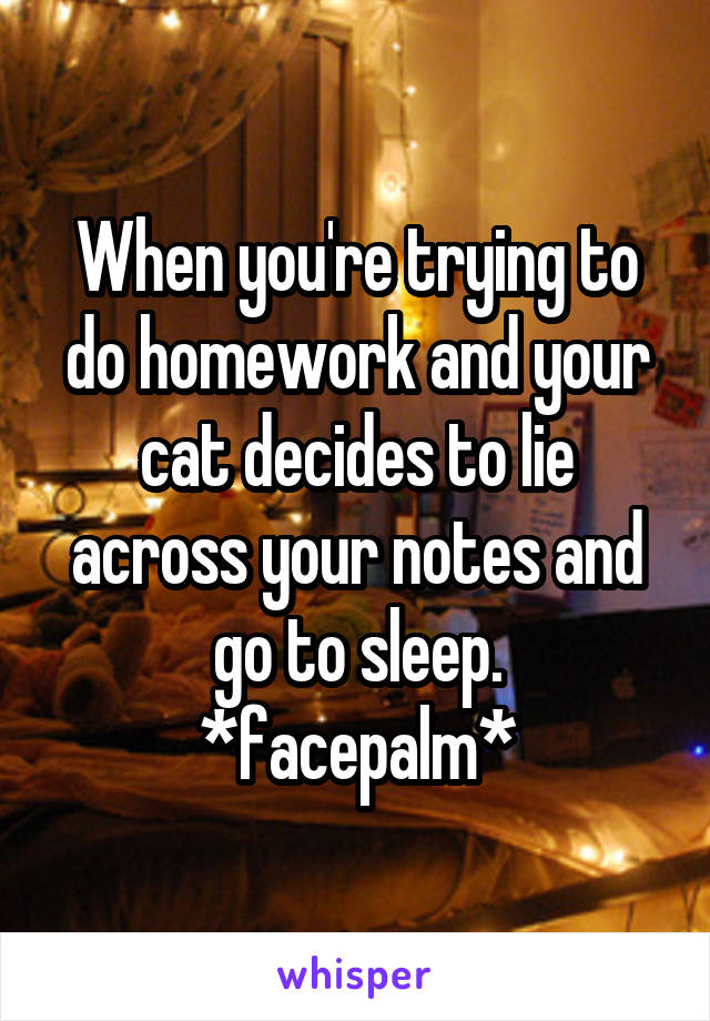 When you're trying to do homework and your cat decides to lie across your notes and go to sleep. *facepalm*